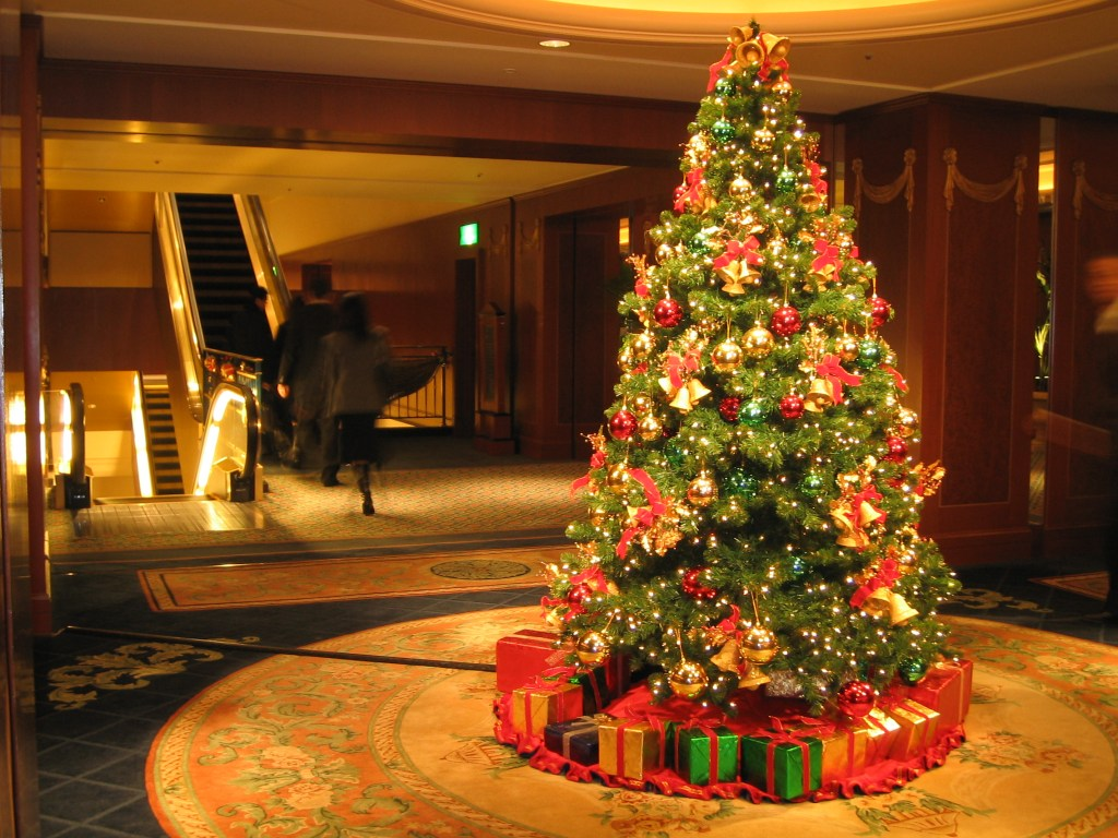 The Christmas Tree.Oh Christmas Tree Mcdaniel College Budapestmcdaniel